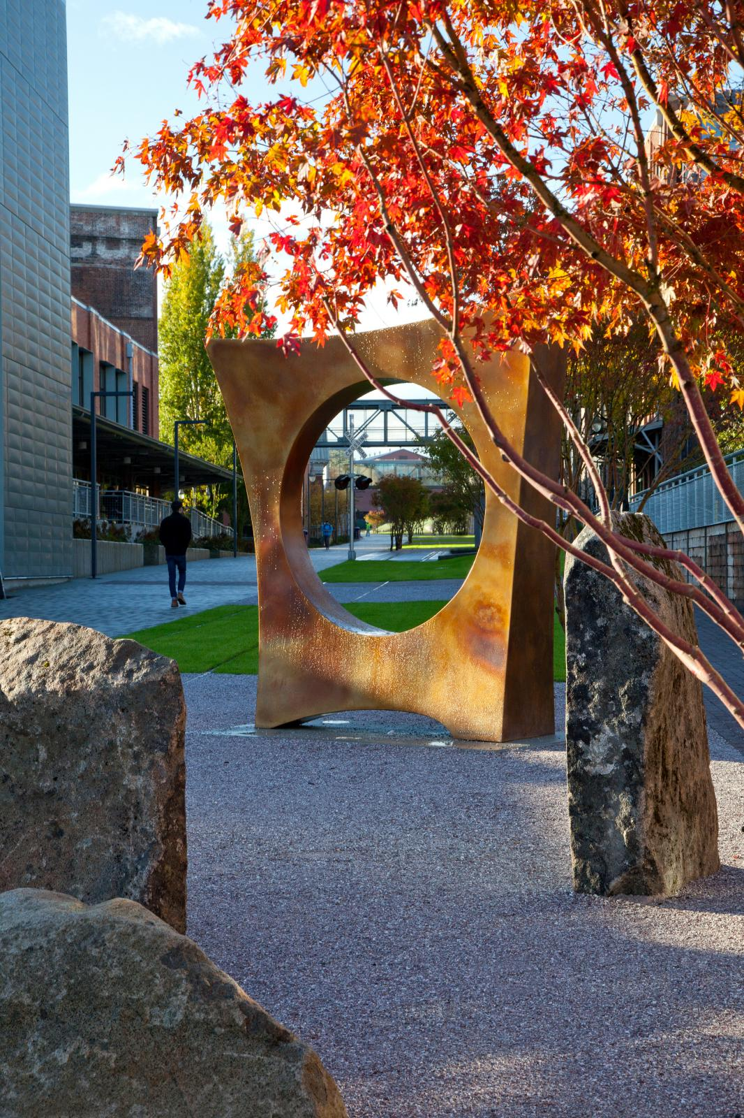 The bronze sculpture, Maru, a bronze square with circular void, with Japanese maples in foreground. Photo credit UW Tacoma.